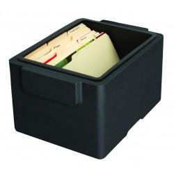Boîte de protection pour supports informatiques SentrySafe GF30